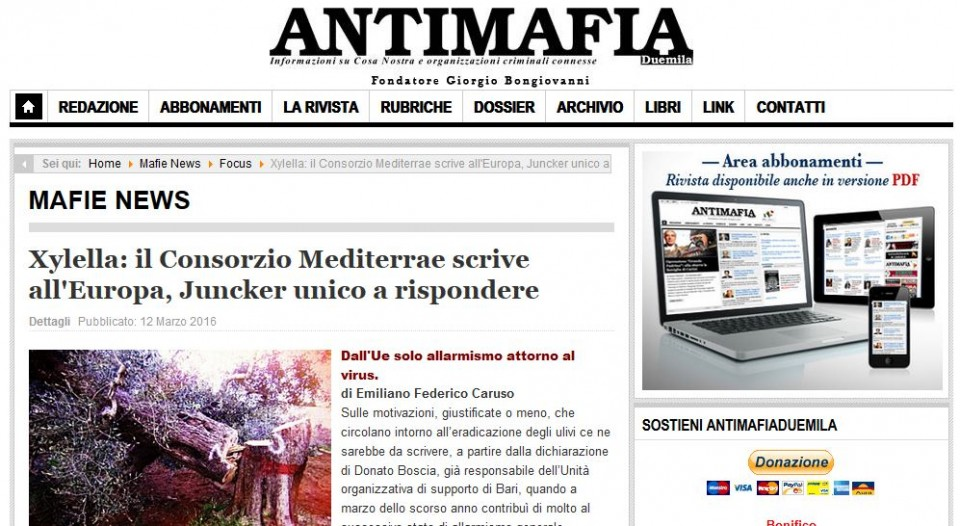 antimafia 2000